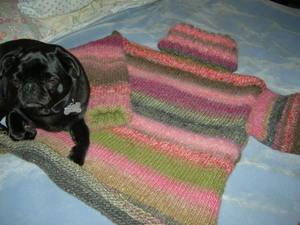 Knitting_209